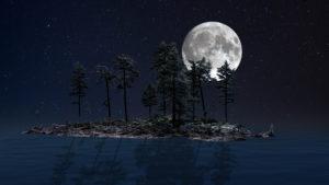 Harald Lundstein, Moonjourney