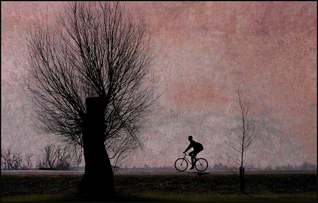 Going Home--Ole Suszkiewicz