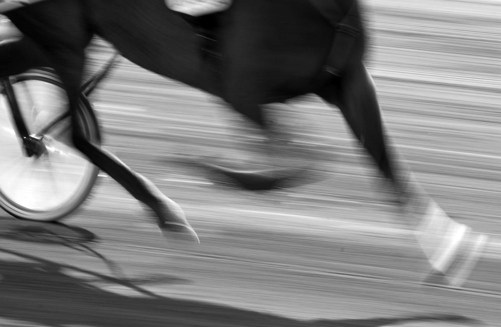 Travløp---Rolf Sylta