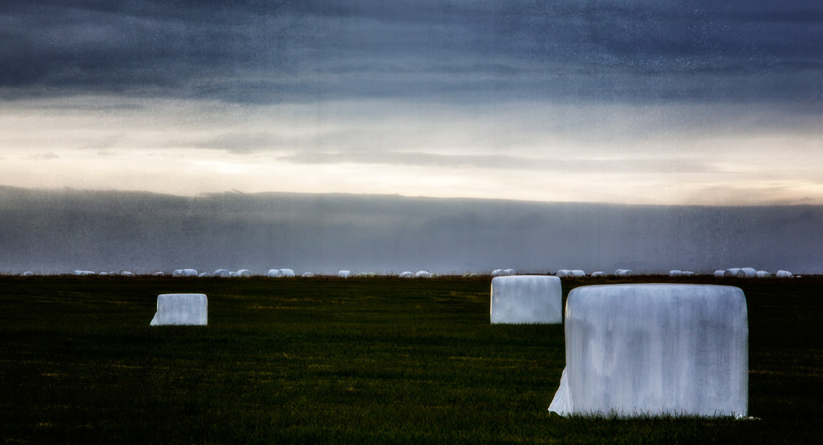 Bodø Fotoklubb på Island. Foto: Igor Kostin