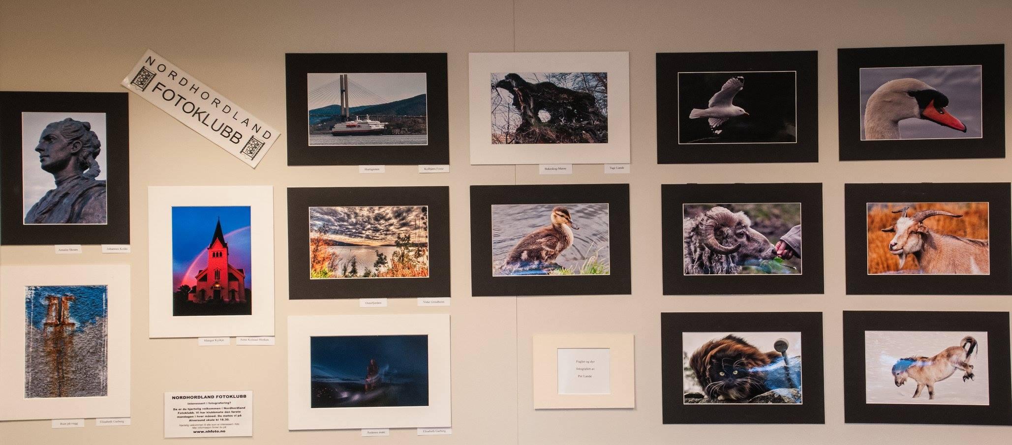Nordhordland fotoklubb pryder Knarvik bibliotek