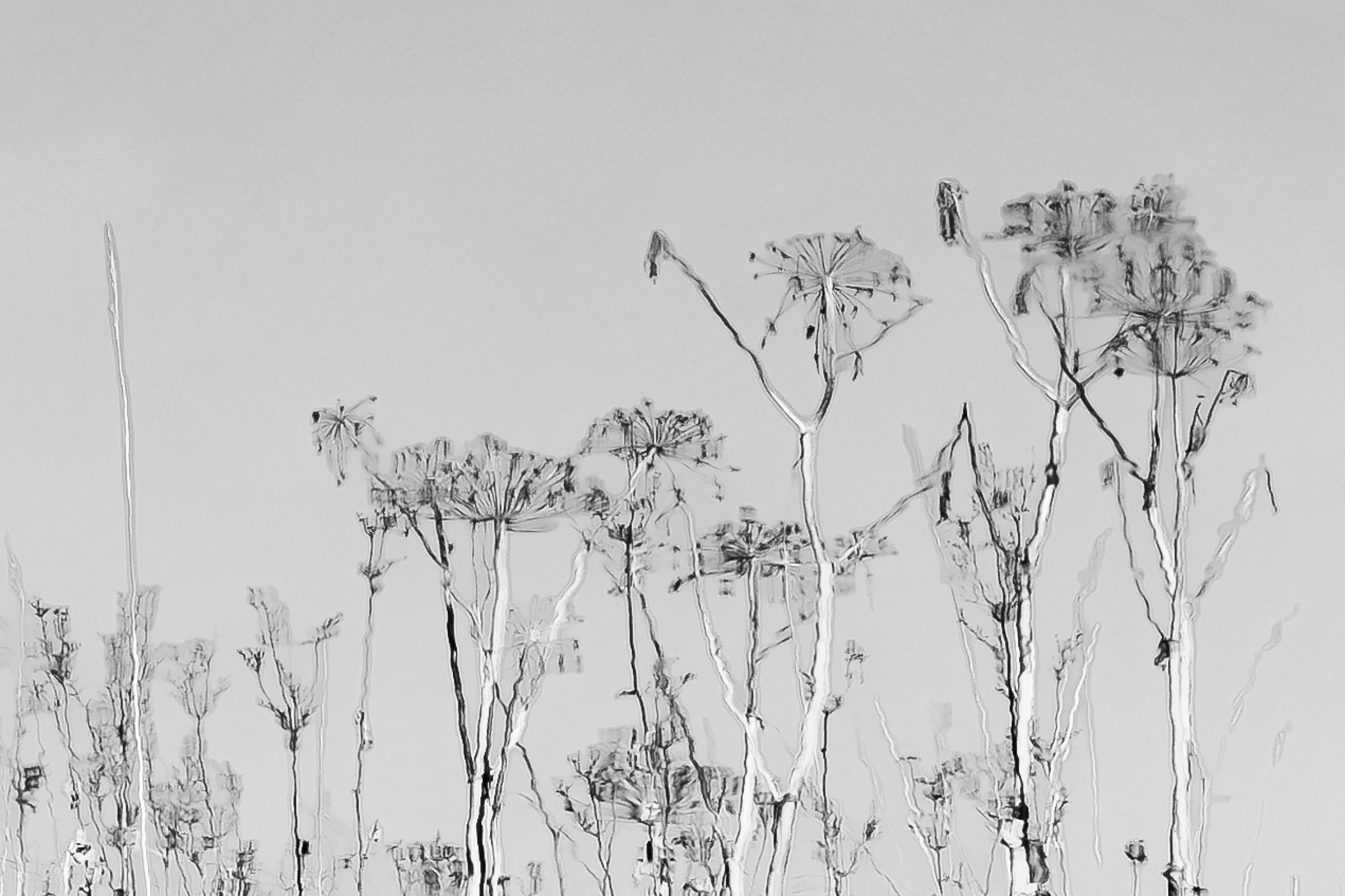 Fotokonkurranse Stormtreffet: Leif Erling Aasan, 1. plass