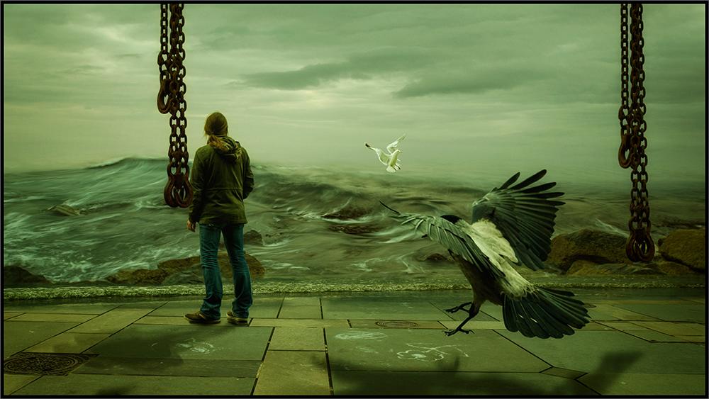 The crow and the ocean (foto: Roy Arild Nilsen)