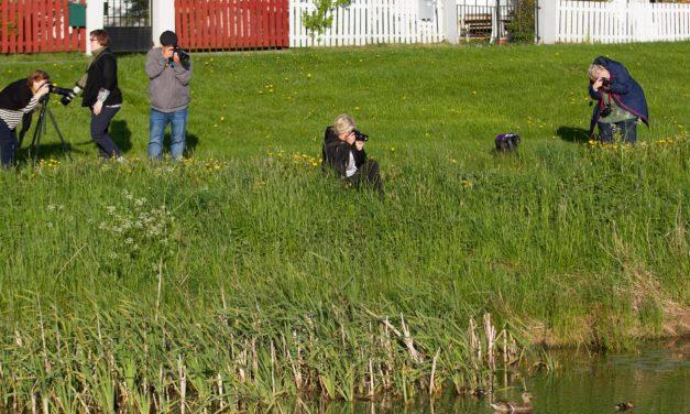 Fredrikstad fotoklubb jakter på sin egen historie
