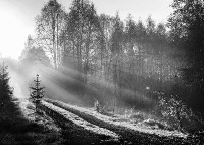 Foto: Arnold Hoddevik