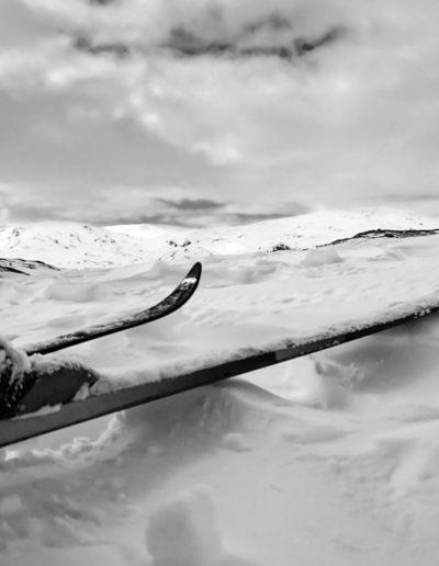 Bente Rosenberger Dybesland: Mountain skiing