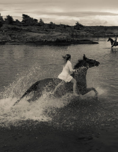 Walter Dragland: To hester i naturen
