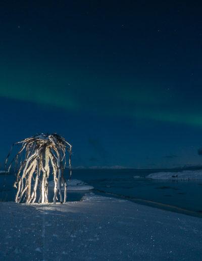 Rota i nordlys (Foto: Linda Mathisen)