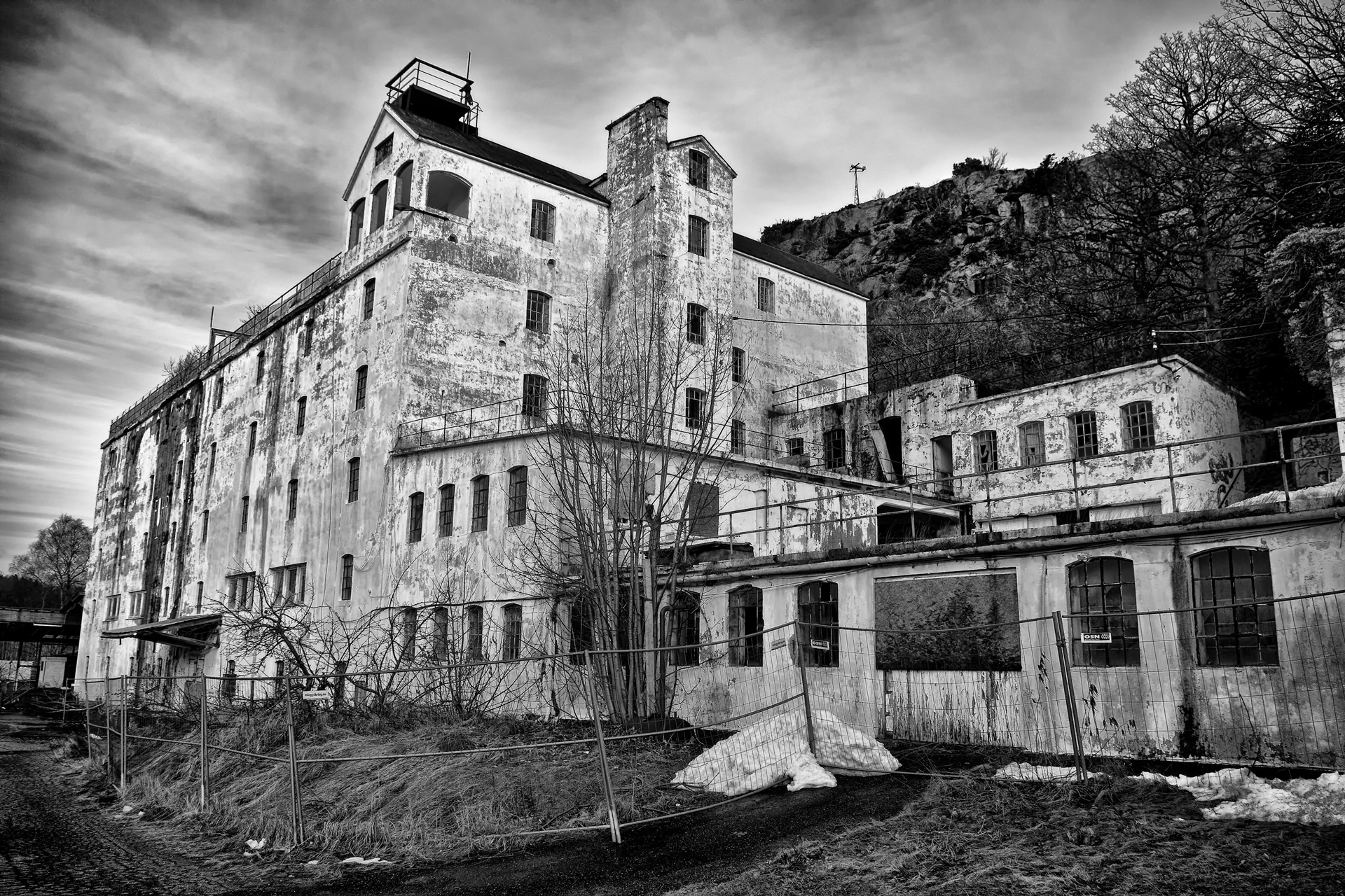 Frode Eldegard Mindrebø — Et industrieventyrs endelikt