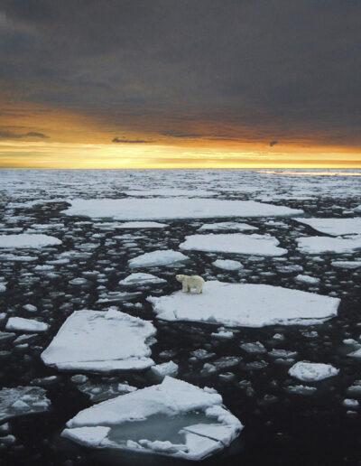 EFIAP-G Jørgen Skaug: Alone in the ice