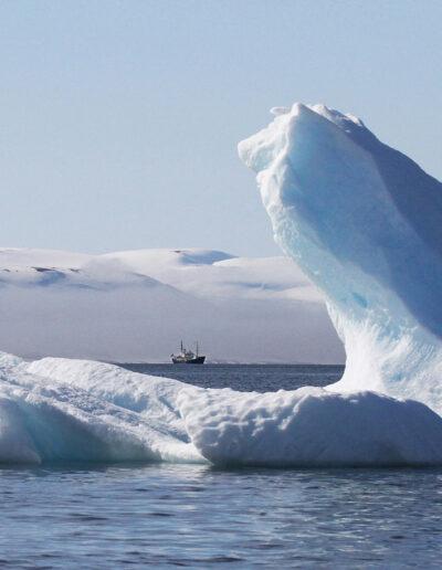 EFIAP-G Jørgen Skaug: Fog in Svalbard