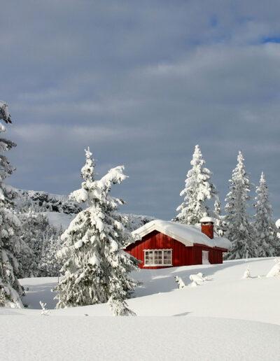 EFIAP-G Jørgen Skaug: Red cabin