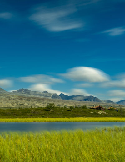 Mountain Grass — Einar Anbjørn Hansen
