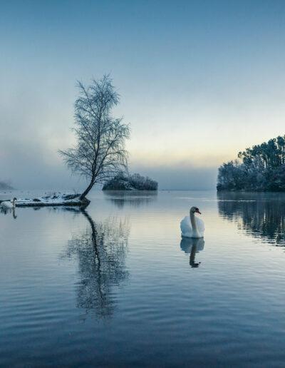 Vinter i Sandnes — Thomas Sirevåg