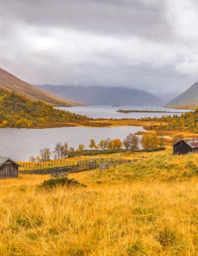 When the Autumn Tells You a Story — Einar Anbjørn Hansen