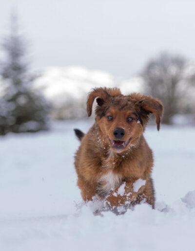 Eva Frisnes, Molde: Lokes første vinter