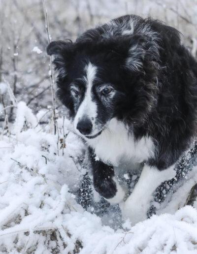 Rie Bønsøe, Molde: Lek i snø