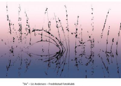 27 FIAP Color Biennal projeksjon kreativt. Foto: Liz Andersen