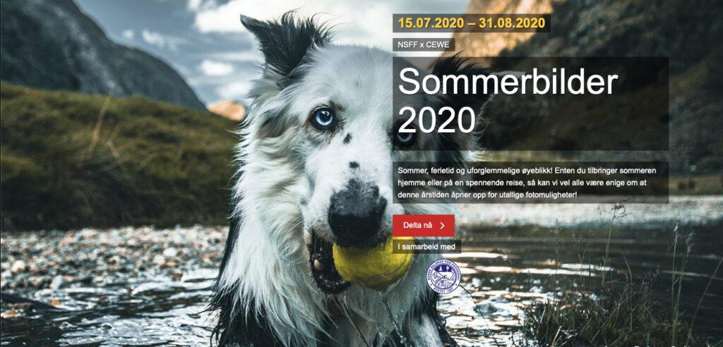 CEWE-konkurranse Sommerbilder